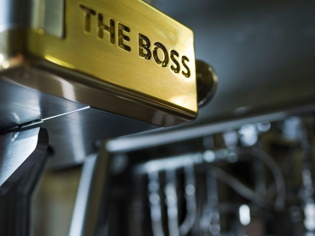 The Boss - Preview 01